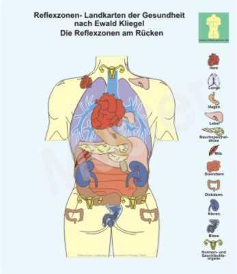 Die Osteochondrose auf dem Foto